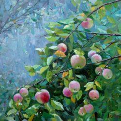Яблоневый сад. Яблоки поспели. Яблочный урожай