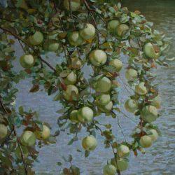 Яблоня над озером