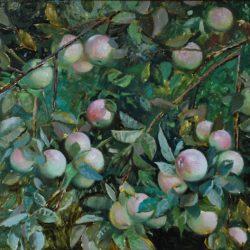 Яблоня в моем саду